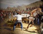 Уморените коне ги убиват - нали? ; comments:52
