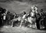 Уморените коне ги убиват - нали? /3/ ; comments:62