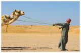 Пустинни балони ; comments:46