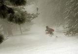 в мъглите гоним се със зимата ; comments:10