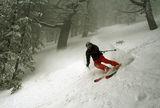 в мъглите гоним се със зимата ; comments:32