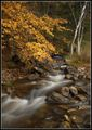 Планински поток ; comments:24