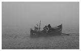 в мъглата ; comments:54