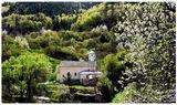 Родопа планина... ; Comments:68