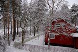 Finlandska prolet ; comments:23
