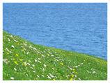 Море с дъх на пролет ; Comments:5