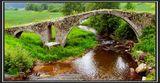 мостче в Родопите ; comments:23
