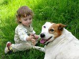 Детето и кучето ; No comments