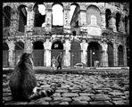 Римляни ; comments:38