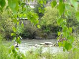 Звуците на пролетта ; Comments:1