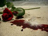Капка кръв и перо ; comments:15