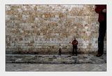 Пред стената ... ; comments:86