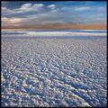 Laguna Tebinquinche, Salar de Atacama, Chile ; comments:48