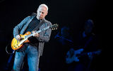 Mark Knopfler ; comments:16
