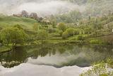 мъгли над Горна Арда ; comments:81