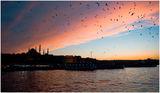 Истанбул ; comments:23