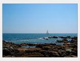 Нашето Черно море ; comments:31