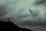 Ловецът на облаци ; comments:17