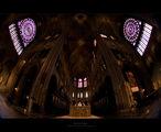Notre Dame ; comments:22