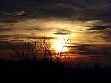 Sunset ; comments:4