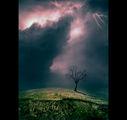 За Бурята и Самотата ; comments:28
