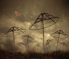 ...танцувай с вятъра... ; comments:40