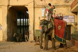 """""""Слонът, моя приятел"""" ; comments:16"""