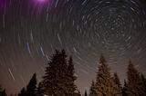 Северната звезда ; comments:28