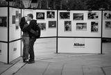Love is all around- ден след откриването на изложбата. ; comments:38