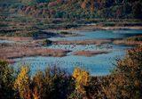 Биосферен резерват Сребърна ; comments:62
