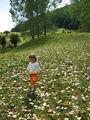 Третата ми есен... ; Comments:1