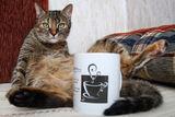 Кафето и Котките ; comments:8