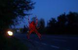 нощем по пътищата ; Comments:2