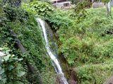 Ботаническа градина Балчик ; comments:11