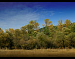 Есенно равновесие... ; Comments:12