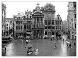 Брюкселски следобеди... ; comments:53