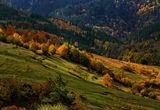 Есенни щрихи ; comments:40