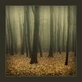 Есенно ; comments:42