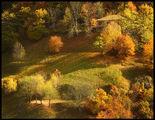 Топлата есенна прегръдка на родопската гора ; comments:48