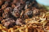 пиперчета и кимиончета ; comments:15
