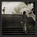 Дъждовен ден ; comments:37