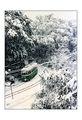 Трамвай №2 /бивш/ ; comments:116