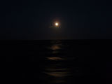 A night at the Atlantic Ocean ; comments:2