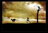 маратон в саваната ; comments:65