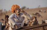 Портрет на един световноНеизвестен индийски философ и мистик...Пушкар, Раджастан ; comments:67