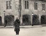 Страсбургска зима ; comments:115