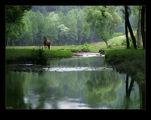 Пролетен пейзаж ; Comments:40