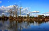 Snohomish River ; comments:24