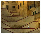 The Man and The Stairway's Labyrinths ; comments:127