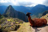 Мачу Пикчу, Перу ; comments:55